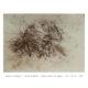 Anahita Bagheri ( Dying Flowers )